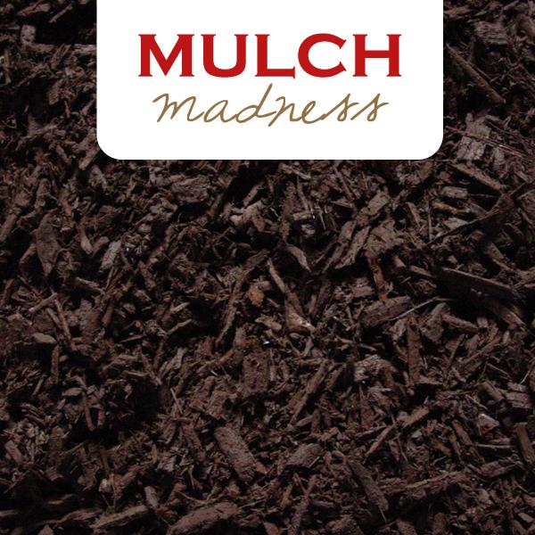 Mulch Madness 2015